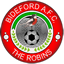 Bideford badge