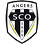 Angers badge