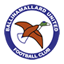 Ballinamallard United badge
