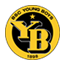 Young Boys badge