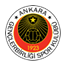 Genclerbirligi badge