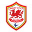 Cardiff City badge