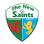 The New Saints badge